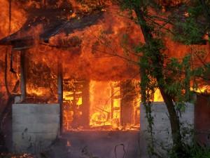 Fire 017